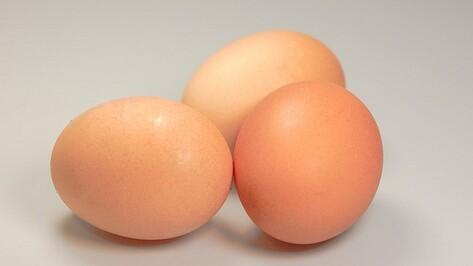 Шнобелевскую премию вручили химикам за превращение вареных яиц в сырые