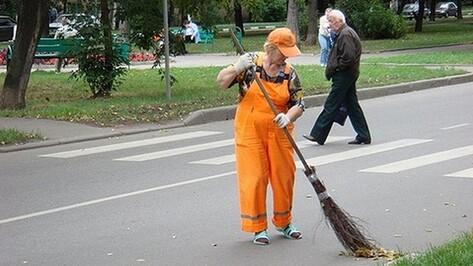 Власти Воронежа пожаловались на нехватку дворников