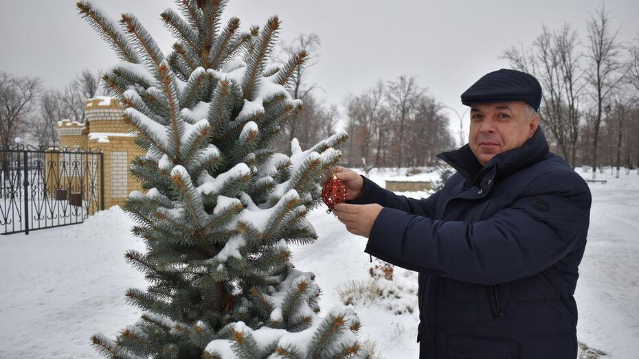 Украсить деревья в парке к Новому году предложили поворинцам