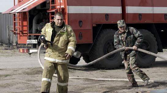 В Воронежской области ликвидировали пожар на площади в 80 га