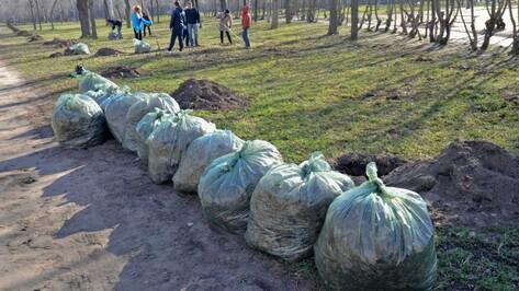 Губернатор позвал жителей Воронежской области на апрельские субботники