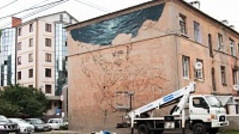 Воронежцы соберут деньги на исторические граффити