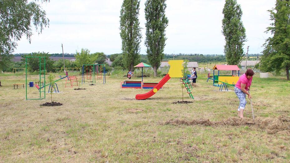 В подгоренском селе общественники установили детскую площадку