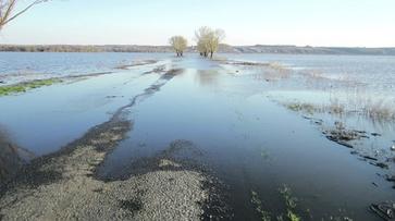 В россошанском селе изменился маршрут автобусов из-за подтопления моста