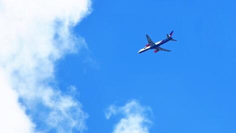 Дополнительные автобусы доставят воронежцев на авиашоу в аэропорту