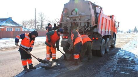 Дорожники предупредили водителей о работах на трассах в Воронежской области