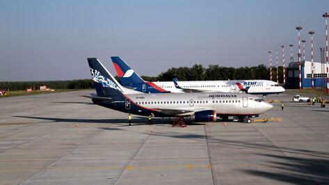 Воронежские семьи с детьми смогут дешево слетать в 6 российских городов