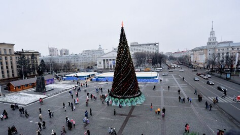 Мэрия Воронежа заплатит за установку главной елки максимальную цену