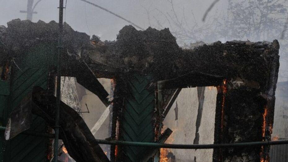При ночном пожаре под Воронежем погиб пенсионер