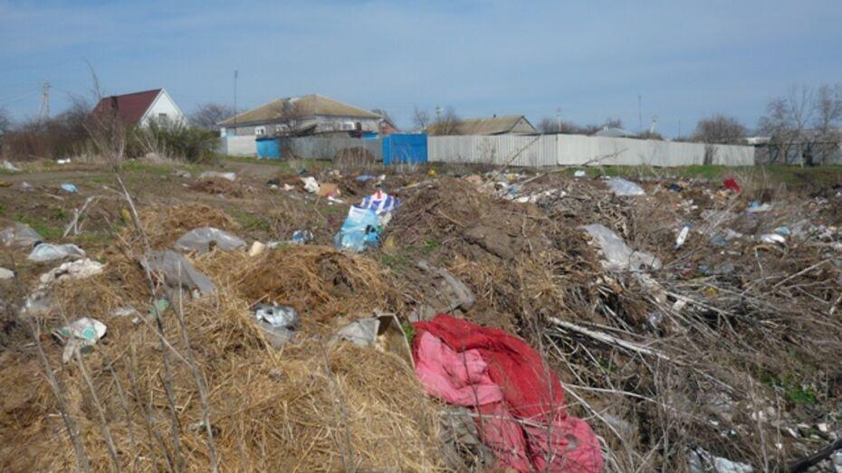 Суд обязал администрацию Верхнемамонского сельского поселения очистить от мусора берега Дона