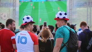Воронежцев пригласили на просмотр матча Россия – Египет на открытом воздухе