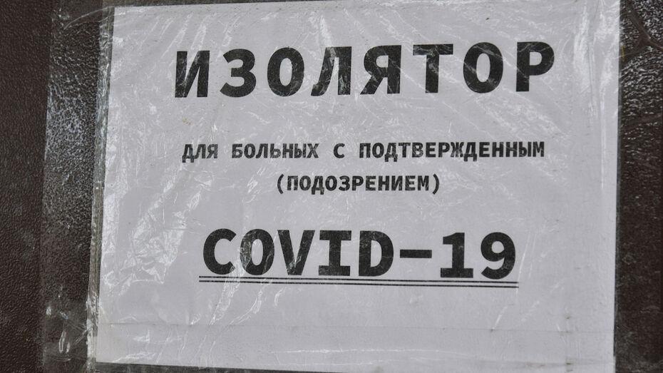 Коронавирус за сутки подтвердили у 195 воронежцев