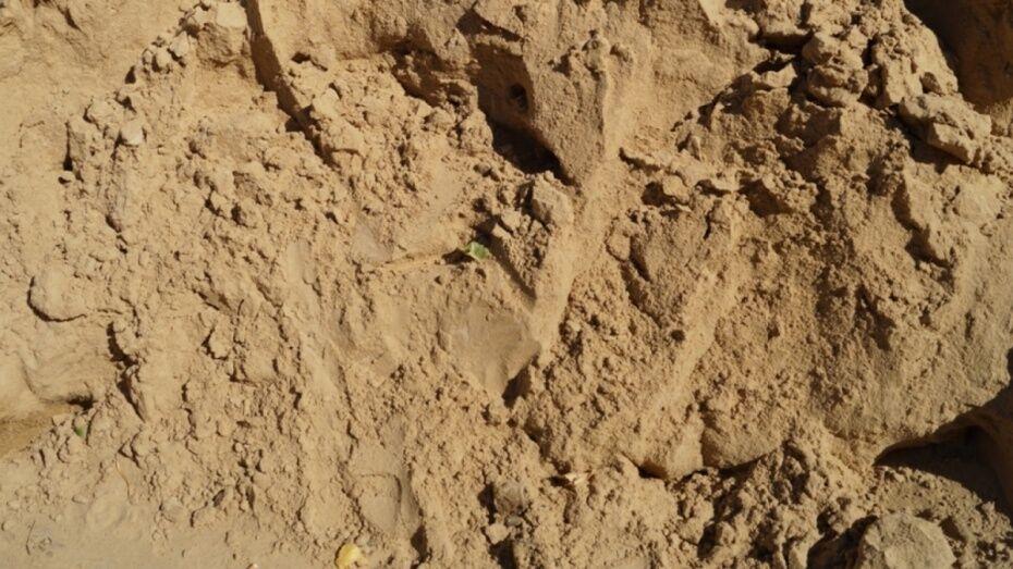 В Воронежской области незаконно добывали песок