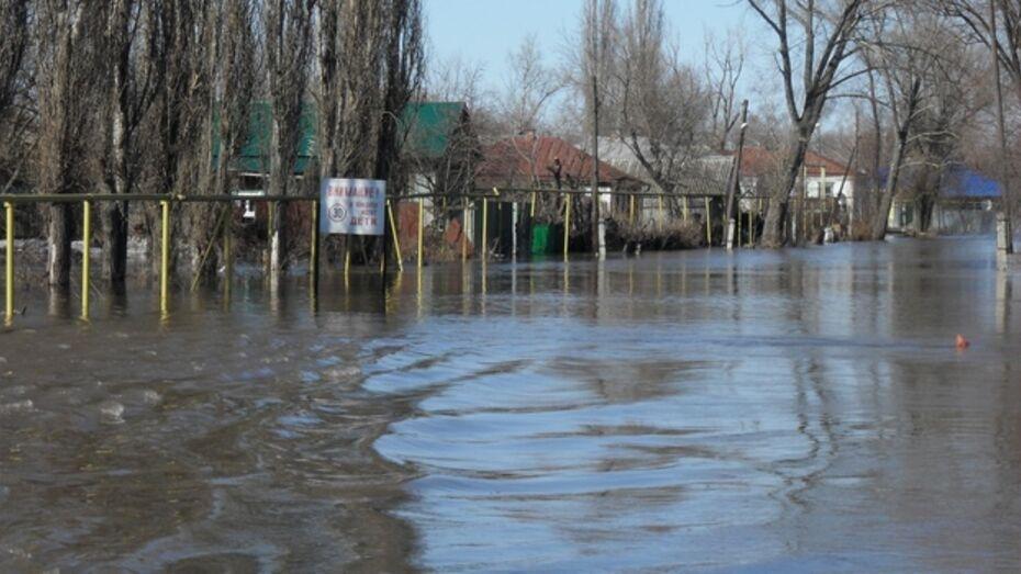 «Вторая волна» паводка накатит на Воронежскую область в выходные