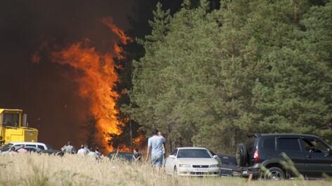Фото РИА «Воронеж». Ландшафтный пожар в Лисках