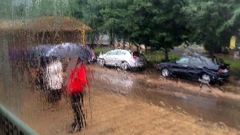 Дожди останутся в Воронеже до конца рабочей недели