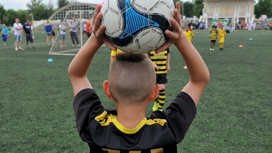 В воронежском парке «Танаис» построят футбольный стадион и велодорожки