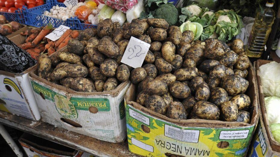 Воронежские власти поддержат сельскую торговлю