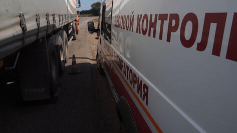 Мэрия предупредила о ликвидации ям на дорогах в 3 районах Воронежа с 17 января