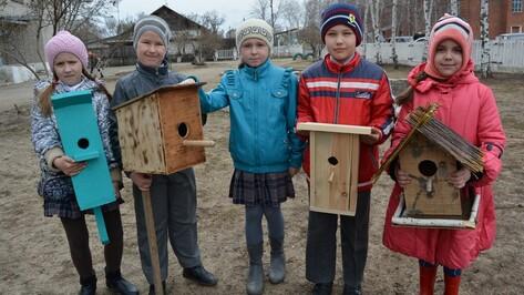 Ученики россошанской школы смастерили 10 домиков для птиц