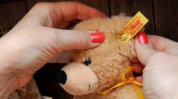 В Воронеже откроется музей игрушечных медведей