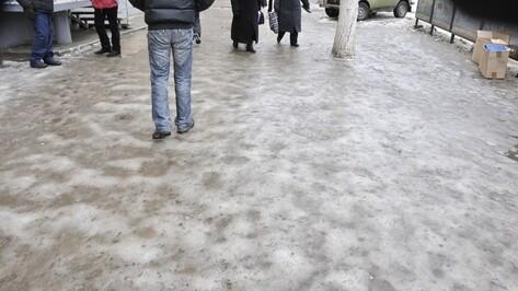 МЧС предупредило воронежцев о гололеде и сильном ветре 12 января