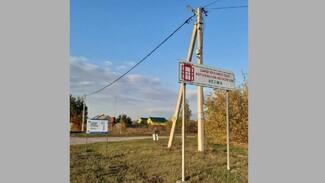 В рамонском селе Нелжа активисты установили 200 светодиодных уличных светильников