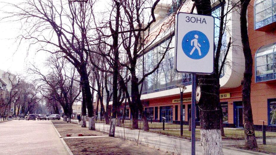 Первая в Воронеже пешеходная зона появилась на улице Карла Маркса