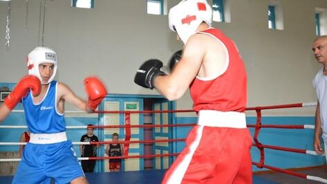 В Кантемировке появилась секция бокса