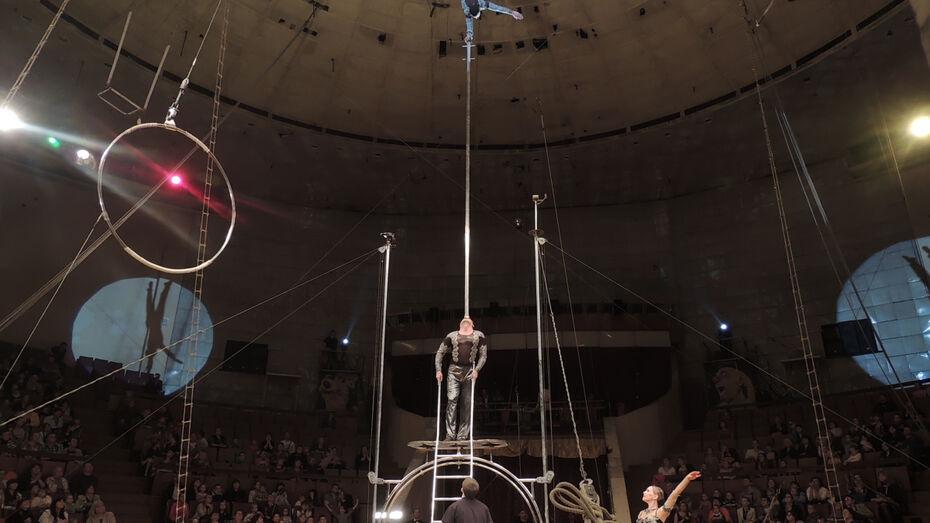 Эксперты обследуют Воронежский цирк для решения о реконструкции