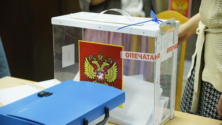 В Воронежской области стартовал единый день голосования
