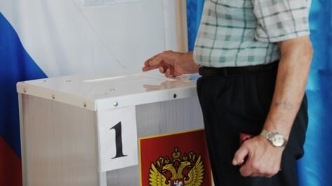 Выборы в Воронежскую облдуму лишились «Национальной безопасности»