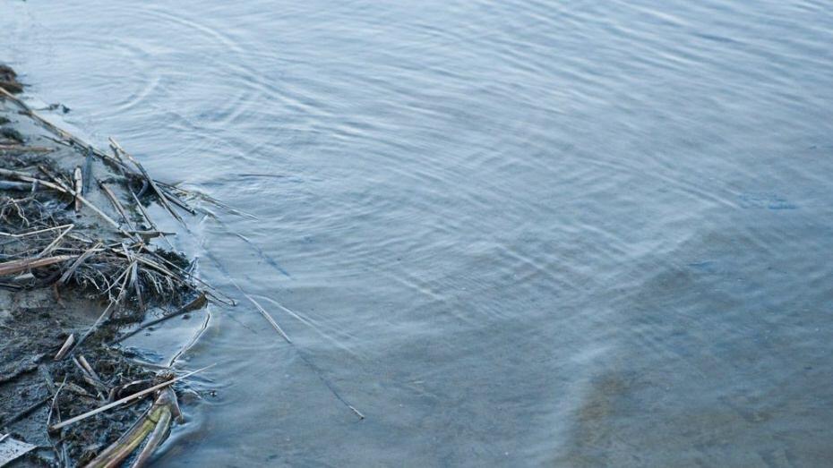Под Воронежем на глазах у сестры утонула 16-летняя девушка