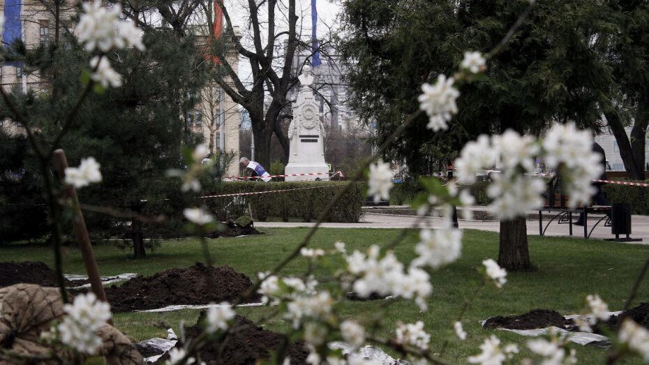 Рабочая неделя в Воронеже будет теплой и сухой