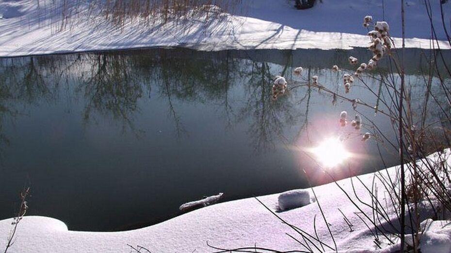 Рамонские спасатели спрогнозировали большой паводок