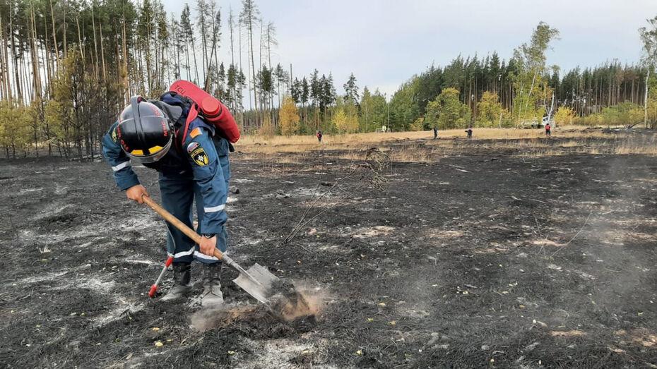 Пожарные ликвидировали 2 из 3 крупнейших пожаров в Воронежской области