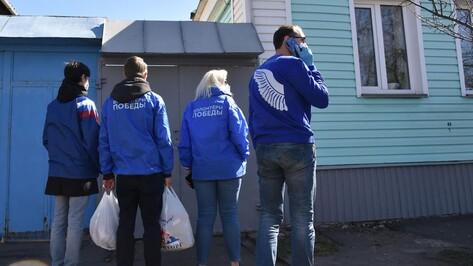 Воронежцам объяснили, как отличить волонтера акции #МыВместе от мошенника