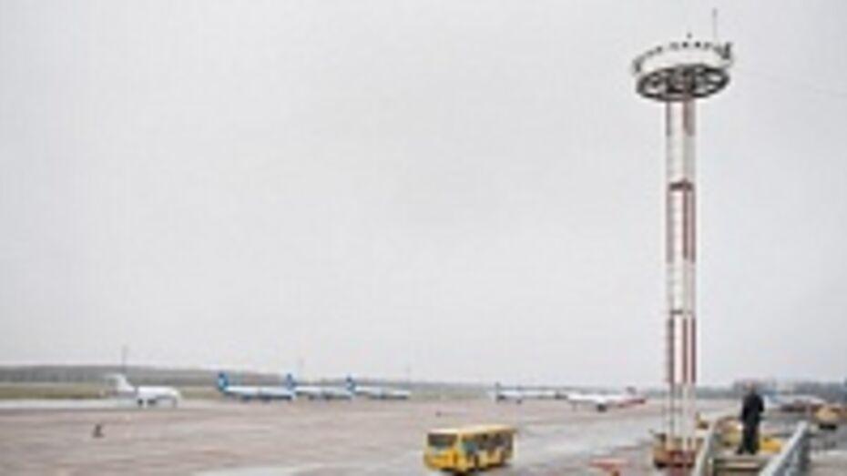 Более 19 тысяч человек в январе воспользовались услугами воронежского аэропорта