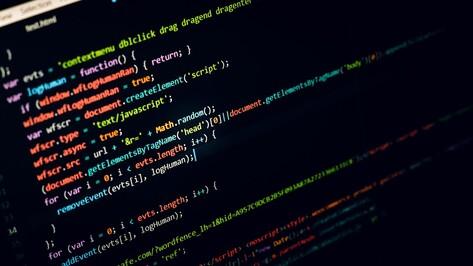 Воронежцев предупредили о мошеннических сайтах е-ОСАГО