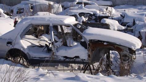 «Мало места для автохлама». Что изменит схема утилизации брошенных машин в Воронеже
