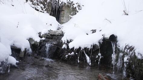 Небезопасные воронежские родники назвал Роспотребнадзор перед Крещением