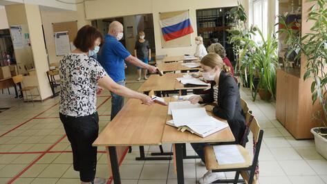 Воронежский облизбирком спрогнозировал явку на выборах в 52%
