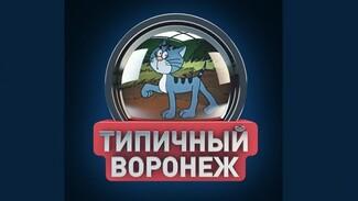 У украденного «Типичного Воронежа» появился дубликат (ОБНОВЛЕНО)