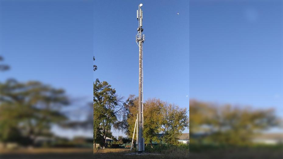 Павловское село Шувалов обеспечили устойчивой сотовой связью