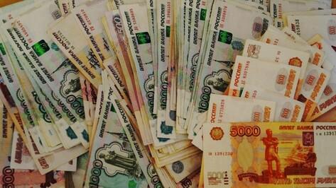 Доходы бюджета Воронежской области в 2015 году вырастут на 417 млн рублей