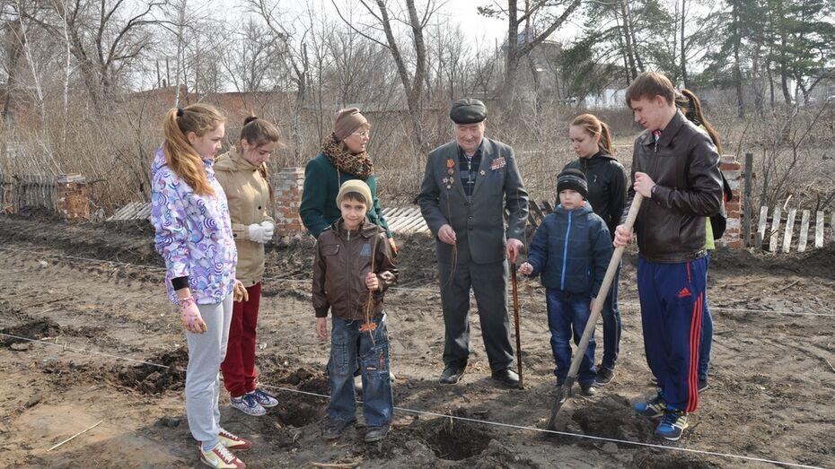 В Павловском районе вырос «Лес Победы»