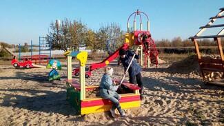 На отдаленной улице репьевского села Бутырки общественники оборудовали детскую площадку