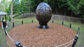 Яйцо стимпанк и дерево из «Аватара». Самые необычные экспонаты «Города-сада» в Воронеже