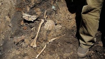 Воронежские поисковики проведут раскопки на месте бывших немецких лагерей