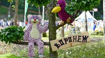 Выставка «Воронеж – сад» пройдет в Центральном парке с 7 по 10 сентября